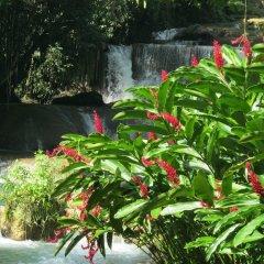 Отель Kudehya Guesthouse Ямайка, Треже-Бич - отзывы, цены и фото номеров - забронировать отель Kudehya Guesthouse онлайн бассейн фото 3