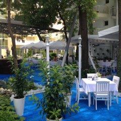 Отель Kalofer Hotel Болгария, Солнечный берег - 1 отзыв об отеле, цены и фото номеров - забронировать отель Kalofer Hotel онлайн