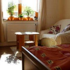 Отель Green Apartment Чехия, Франтишкови-Лазне - отзывы, цены и фото номеров - забронировать отель Green Apartment онлайн удобства в номере фото 2