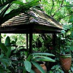 Отель Mae Nai Gardens фото 6
