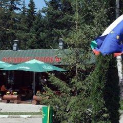 Отель Villa Malina Болгария, Боровец - отзывы, цены и фото номеров - забронировать отель Villa Malina онлайн бассейн