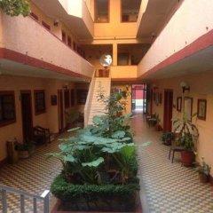 Отель Gallo Rubio Мексика, Гвадалахара - отзывы, цены и фото номеров - забронировать отель Gallo Rubio онлайн фото 14