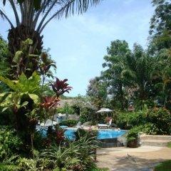Отель Palm Garden Resort бассейн фото 5