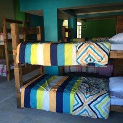 Baja's Cactus Hostel Кабо-Сан-Лукас комната для гостей фото 5