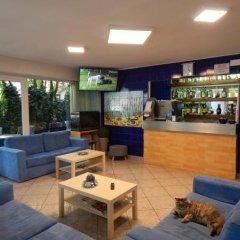 Отель Vera Италия, Риччоне - отзывы, цены и фото номеров - забронировать отель Vera онлайн фото 4