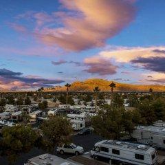 Отель Arizona Charlie's Boulder - Casino Hotel, Suites, & RV Park США, Лас-Вегас - отзывы, цены и фото номеров - забронировать отель Arizona Charlie's Boulder - Casino Hotel, Suites, & RV Park онлайн фото 3