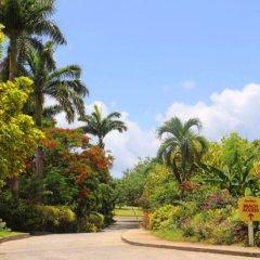 Отель Coco Palm фото 11