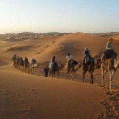 Отель Marmar Марокко, Уарзазат - отзывы, цены и фото номеров - забронировать отель Marmar онлайн приотельная территория фото 2