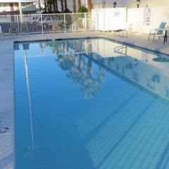 Отель Holiday Motel США, Лас-Вегас - отзывы, цены и фото номеров - забронировать отель Holiday Motel онлайн бассейн
