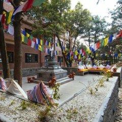 Отель Club Himalaya Непал, Нагаркот - отзывы, цены и фото номеров - забронировать отель Club Himalaya онлайн фото 4