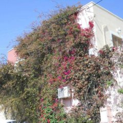 Отель Palladion Греция, Остров Санторини - отзывы, цены и фото номеров - забронировать отель Palladion онлайн вид на фасад