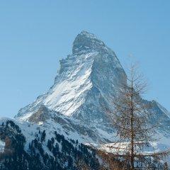 Отель Hemizeus Швейцария, Церматт - отзывы, цены и фото номеров - забронировать отель Hemizeus онлайн фото 7