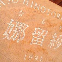 Отель Log Sanso Hinotori Минамиогуни развлечения