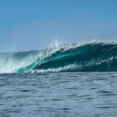 Отель Moorea Surf Bed and Breakfast фото 9