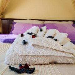 Отель Villa Petra Сербия, Белград - отзывы, цены и фото номеров - забронировать отель Villa Petra онлайн фото 7