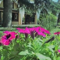 Отель El Rustego Италия, Рубано - отзывы, цены и фото номеров - забронировать отель El Rustego онлайн фото 7