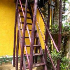 Отель Aelam Home Stay Cabana Номер Делюкс с различными типами кроватей фото 31