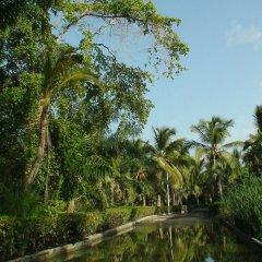 Отель Riu Naiboa All Inclusive Доминикана, Пунта Кана - 1 отзыв об отеле, цены и фото номеров - забронировать отель Riu Naiboa All Inclusive онлайн приотельная территория фото 2