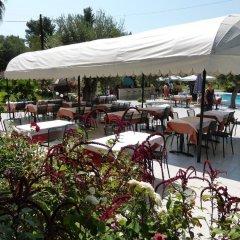 Отель Olympic Bibis Hotel Греция, Метаморфоси - отзывы, цены и фото номеров - забронировать отель Olympic Bibis Hotel онлайн питание