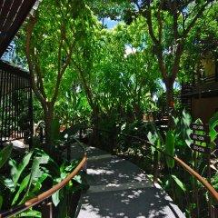Отель Samui Laguna Resort Таиланд, Самуи - 7 отзывов об отеле, цены и фото номеров - забронировать отель Samui Laguna Resort онлайн фото 8