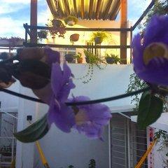 Отель Casa Canario Bed & Breakfast фото 18