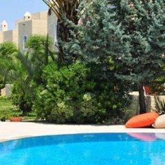 La Vida Blanca Exclusive Boutique Hotel Турция, Торба - отзывы, цены и фото номеров - забронировать отель La Vida Blanca Exclusive Boutique Hotel онлайн бассейн фото 2