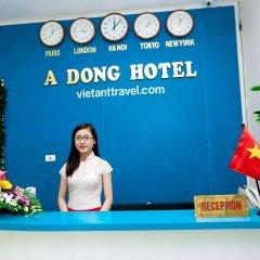 Dong A Hotel Ханой с домашними животными