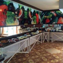 Hotel Denitza гостиничный бар