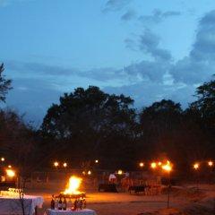 Отель Big Game Camp Yala Шри-Ланка, Катарагама - отзывы, цены и фото номеров - забронировать отель Big Game Camp Yala онлайн фото 6