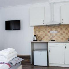 Гостиница Potemkin's Favorite Suites в номере фото 2