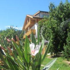 Отель Feld-hof Италия, Горнолыжный курорт Ортлер - отзывы, цены и фото номеров - забронировать отель Feld-hof онлайн фото 2