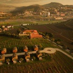 Отель The Wine House Hotel - Quinta da Pacheca Португалия, Ламего - отзывы, цены и фото номеров - забронировать отель The Wine House Hotel - Quinta da Pacheca онлайн пляж