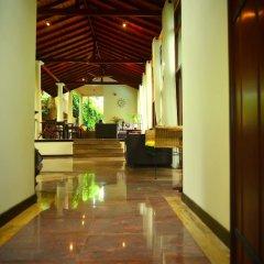 Отель Tropical Retreat интерьер отеля
