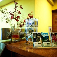 Jupiter hotel Цахкадзор гостиничный бар