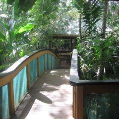 Отель Colo-I-Suva Rainforest Eco Resort Вити-Леву балкон