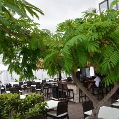Kalamar Турция, Калкан - 4 отзыва об отеле, цены и фото номеров - забронировать отель Kalamar онлайн питание