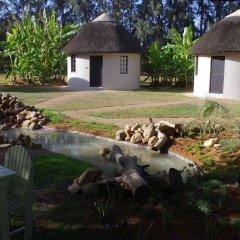 Отель Addo African Home фото 19