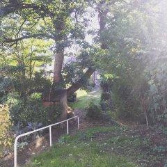 Ash Cottage 2
