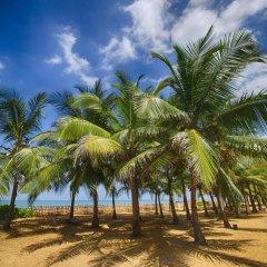 Отель Club Hotel Dolphin Шри-Ланка, Вайккал - отзывы, цены и фото номеров - забронировать отель Club Hotel Dolphin онлайн пляж