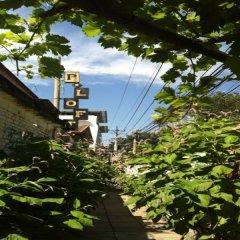 P.Loft Youth Hostel фото 3