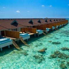 Отель Carpe Diem Beach Resort & Spa - All inclusive фото 2