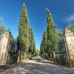 Отель Villa Almeira Zakynthos Греция, Закинф - отзывы, цены и фото номеров - забронировать отель Villa Almeira Zakynthos онлайн фото 4
