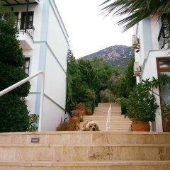 Mediteran Hotel Турция, Калкан - отзывы, цены и фото номеров - забронировать отель Mediteran Hotel онлайн фото 13