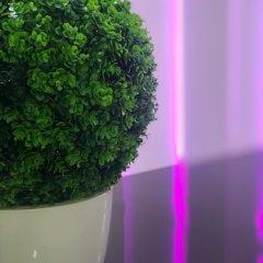 Гостиница ARBAT в Саратове отзывы, цены и фото номеров - забронировать гостиницу ARBAT онлайн Саратов интерьер отеля фото 3