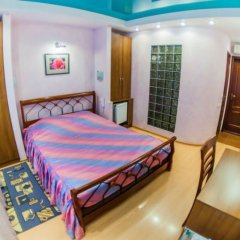 Мини-отель Даниловский 3* Стандартный номер разные типы кроватей фото 2