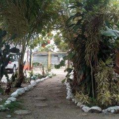 Отель Coco cabañas Гондурас, Тела - отзывы, цены и фото номеров - забронировать отель Coco cabañas онлайн