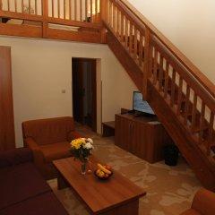 Отель Strazhite Hotel - Half Board Болгария, Банско - отзывы, цены и фото номеров - забронировать отель Strazhite Hotel - Half Board онлайн комната для гостей фото 5