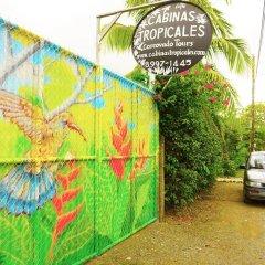 Отель Cabinas Tropicales Puerto Jimenez Ринкон городской автобус