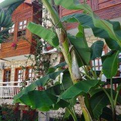 Мини- Lale Park Турция, Сиде - отзывы, цены и фото номеров - забронировать отель Мини-Отель Lale Park онлайн фото 8