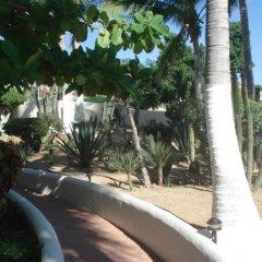 Отель Park Royal Homestay Los Cabos. Мексика, Сан-Хосе-дель-Кабо - отзывы, цены и фото номеров - забронировать отель Park Royal Homestay Los Cabos. онлайн фото 11